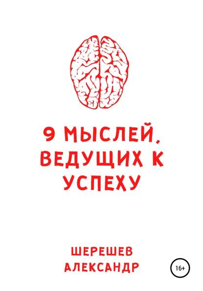9 мыслей, ведущих к успеху (Александр Александрович Шерешев)