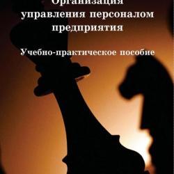 Организация управления персоналом предприятия (Михаил Рогожин)