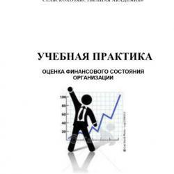 Учебная практика. Оценка финансового состояния организации (Н. Ф. Зарук)