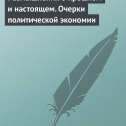 Размышления о прошлом и настоящем. Очерки политической экономии (В. Н. Черковец)