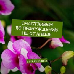 Счастливым попринуждению нестанешь. высказывания (Анжелика Андрианова)