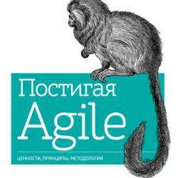 Постигая Agile (Дженнифер Грин)