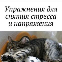 Упражнения для снятия стресса инапряжения (Алексей Мичман)