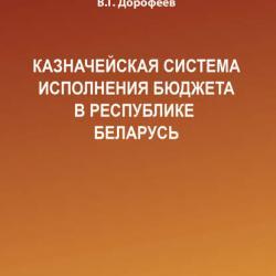 Казначейская система исполнения бюджета в Республике Беларусь (Вячеслав Дорофеев)
