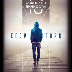 13 осколков личности. Книга сильных (Егор Горд)