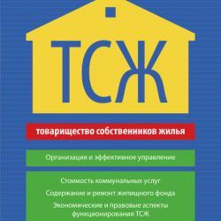 ТСЖ. Организация и эффективное управление (Вениамин Гассуль)