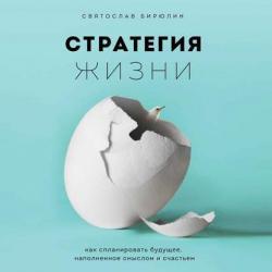 Аудиокнига Стратегия жизни. Как спланировать будущее, наполненное смыслом и счастьем (Святослав Бирюлин)