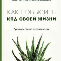 Как повысить КПД своей жизни (Маргарита Желновакова) - скачать книгу