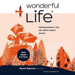 Аудиокнига Wonderful Life. Размышления о том, как найти смысл жизни (Фрэнк Мартела)