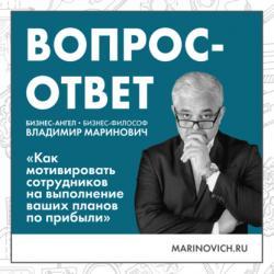 Аудиокнига Как мотивировать сотрудников на выполнение ваших планов по прибыли (Владимир Маринович)