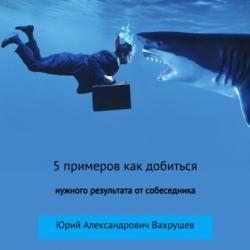 5 примеров как добиться нужного результата от собеседника (Юрий Александрович Вахрушев)