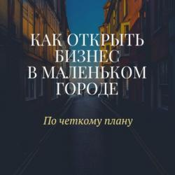 Как открыть бизнес в маленьком городе (Александр Васильевич Макаров)