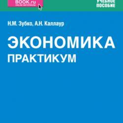 Книги по экономике. Практикум. (СПО). Учебное пособие - скачать книгу