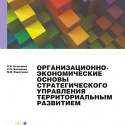 Организационно-экономические основы стратегического планирования.. (Монография) - скачать книгу