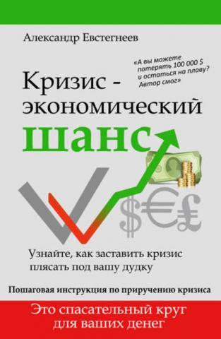 Кризис: экономический шанс (Александр Евстегнеев)