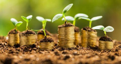 инвестиционные фонды