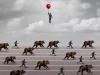 медвежий разворот на бирже